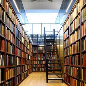 Библиотеки Голицино